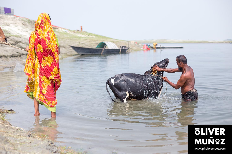 bangladesh_jomuna_bengala_0huih