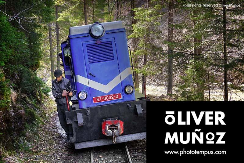 El tren que transportaba madera